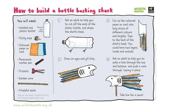 Bottle basking shark