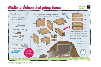 Make a deluxe hedgehog house