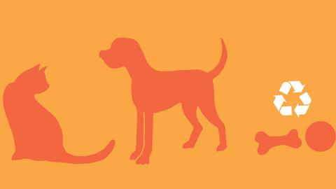 eco-friendly pets